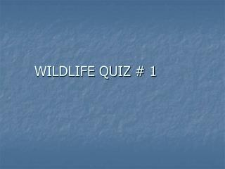 WILDLIFE QUIZ # 1