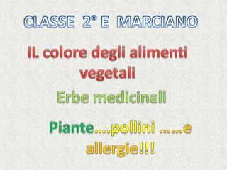 IL colore degli alimenti vegetali