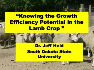 �Knowing the Growth Efficiency Potential in the Lamb Crop �