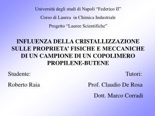 """Università degli studi di Napoli """"Federico II"""" Corso di Laurea  in Chimica Industriale"""