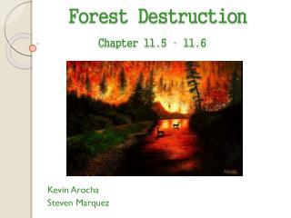 Forest Destruction Chapter 11.5 – 11.6