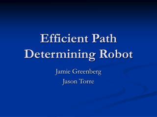 Efficient Path Determining Robot