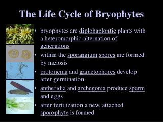 The Life Cycle of Bryophytes