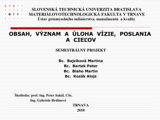 SEMESTRÁLNY PROJEKT Bc.   Bajzíková  Martina Bc.   Bartek  Peter Bc.  Blaho Martin