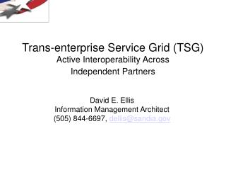 Trans-enterprise Service Grid (TSG) Active Interoperability Across Independent Partners