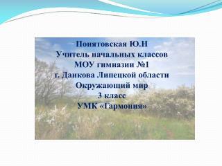 Понятовская  Ю.Н Учитель начальных классов  МОУ гимназии №1  г. Данкова Липецкой области
