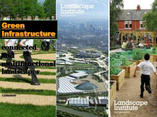 : connected  and  multifunctional  landscapes