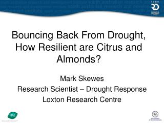 Bouncing Back From Drought, How Resilient are Citrus and Almonds?