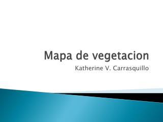 Mapa  de  vegetacion