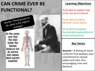 Can Crime ever be Functional?