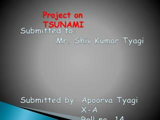 Project on TSUNAMI