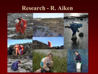 Research - R. Aiken