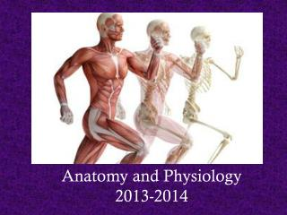Anatomy and Physiology 2013-2014