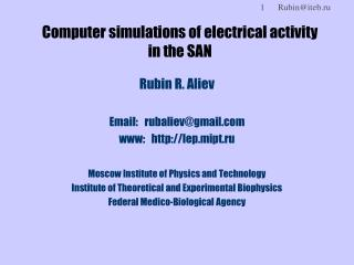 Computer simulations of electrical activity  in the SAN