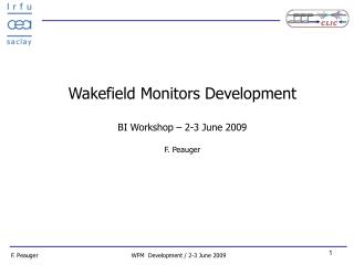 Wakefield Monitors Development BI Workshop – 2-3 June 2009 F. Peauger