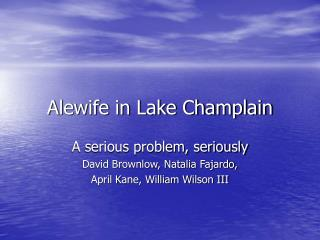 Alewife in Lake Champlain