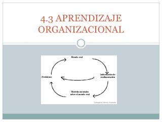 4.3 APRENDIZAJE ORGANIZACIONAL