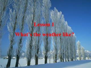Lesson 1 What's the weather like?