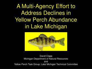 A Multi-Agency Effort to Address Declines in Yellow Perch Abundance in Lake Michigan