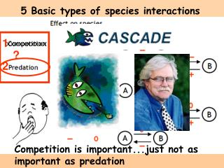 5 Basic types of species interactions