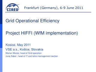 Grid Operational Efficiency Project HIFFI  (WfM implementation)