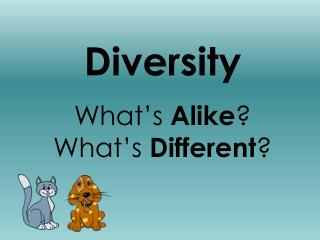 Diversity What�s  Alike ? What�s  Different ?