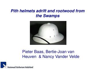 Pith helmets adrift and rootwood from the Swamps