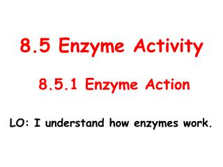 8.5 Enzyme Activity