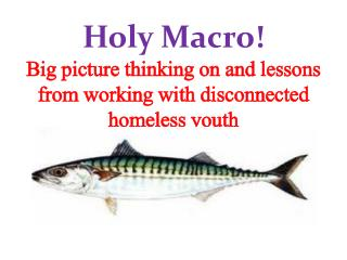 Holy Macro! Big picture thinking on and lessons from working with disconnected homeless youth