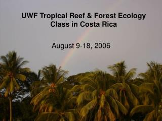 UWF Tropical Reef & Forest Ecology Class in Costa Rica