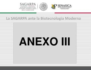 La  SAGARPA ante la  Biotecnología  Moderna