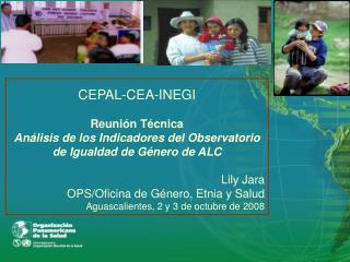 CEPAL-CEA-INEGI Reunión Técnica