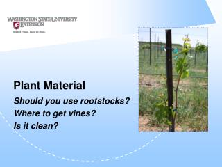 Plant Material