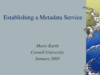 Establishing a Metadata Service