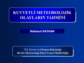 Mahmut KAYHAN