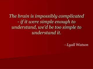 - Lyall Watson