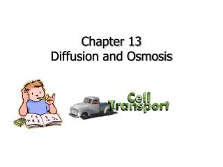 Chapter 13 Diffusion and Osmosis