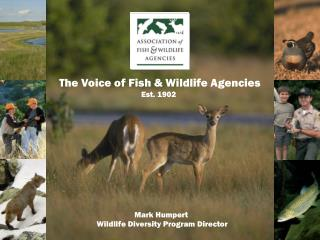 The Voice of Fish & Wildlife Agencies