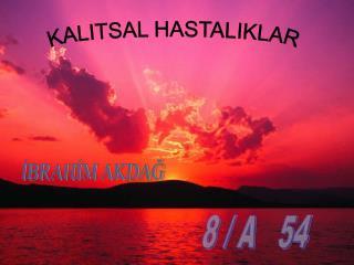KALITSAL HASTALIKLAR