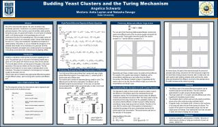 Budding Yeast Clusters and the Turing Mechanism Angelica Schwartz
