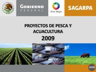 PROYECTOS DE PESCA Y ACUACULTURA    2009