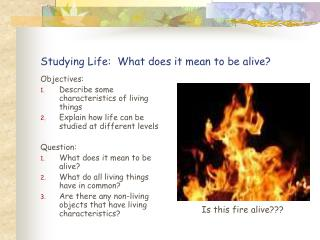 Studying Life:  What does it mean to be alive?
