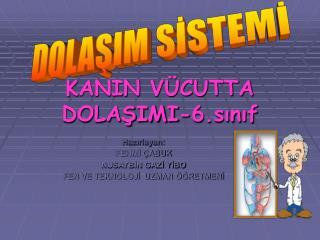 KANIN VÜCUTTA DOLAŞIMI-6.sınıf