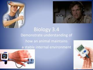 Biology 3.4