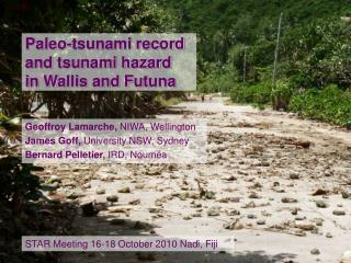 Paleo-tsunami record  and tsunami hazard  in Wallis and Futuna