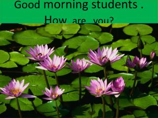 G ood  morning students . H ow   are   you?