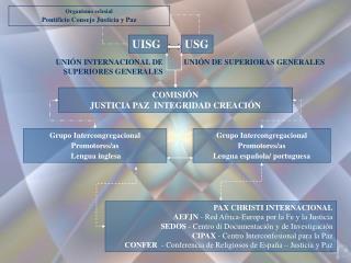 Organismo eclesial Pontificio Consejo Justicia y Paz