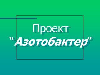 """Проект """" Азотобактер """""""