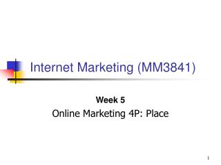 Internet Marketing (MM3841)