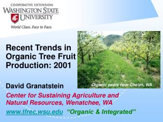 Recent Trends in Organic Tree Fruit Production: 2001